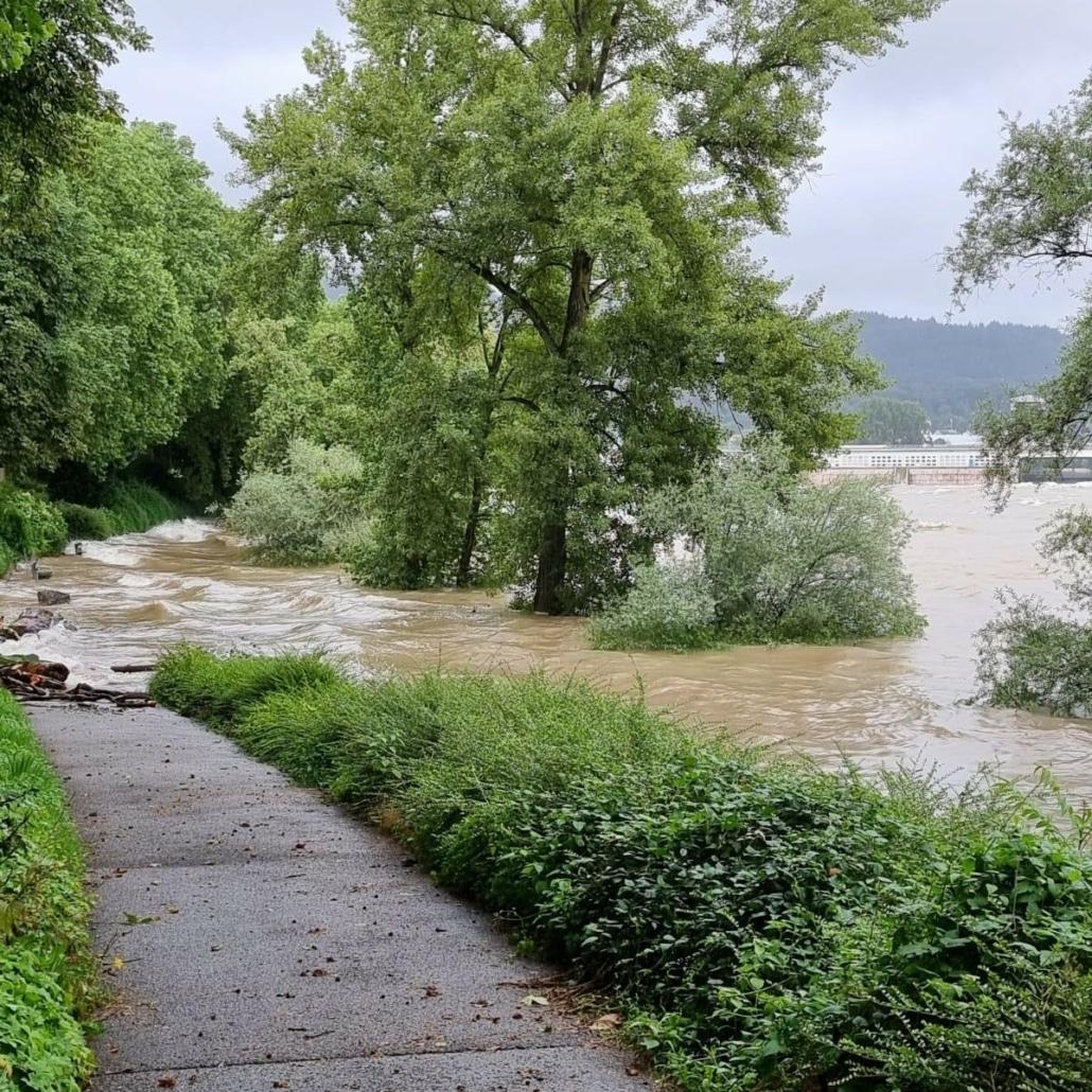 Rheinufer in Bad Säckingen 2